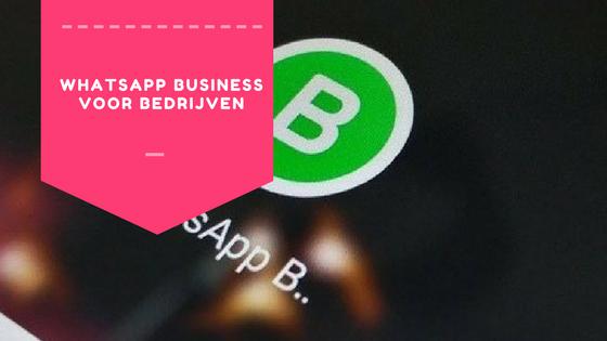 WhatsApp Business: kansen en mogelijkheden